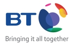 BT small logo